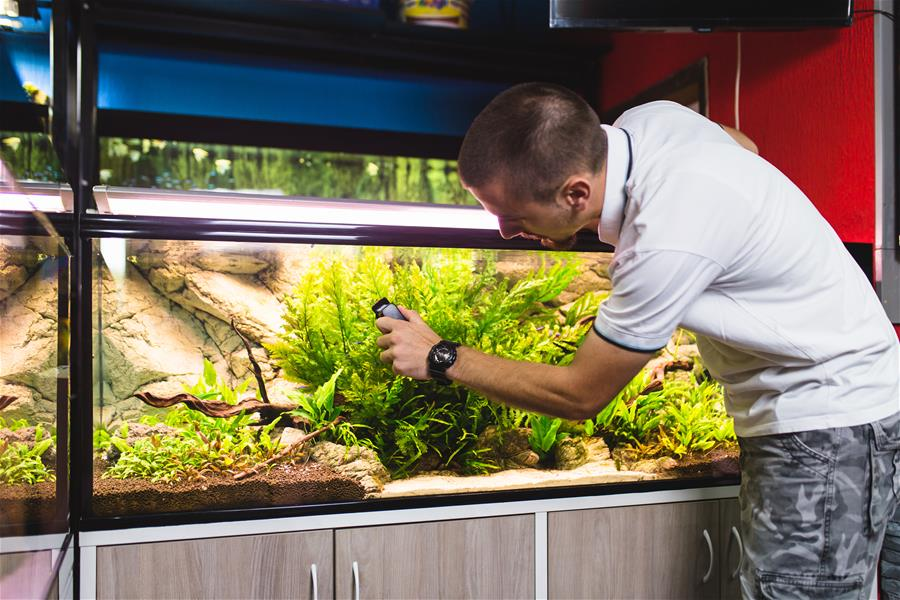 aquarium cleaning zoonosis
